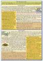 Prehľad svetových dejín