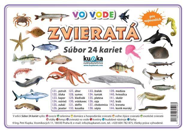Súbor 24 kariet - zvieratá (vo vode)