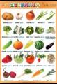 Popis produktu - Zelenina