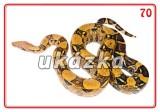 Súbor 24 kariet - exotické zvieratá