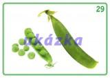Súbor 24 kariet - zelenina