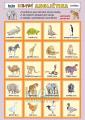 Hravá angličtina 1 - zvířata
