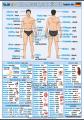 Ľudské telo v nemčine